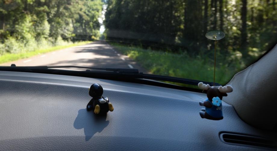 """våran nya bil maskot """"Blekis"""" trivs bra ihop med älgen..."""