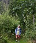 långa stärkande skogspromenader gör gott för kropp och själ...
