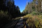 Dressincykling på den nedlagda järnvägen mellan Årjäng och Bengtsfors, totalt 50 km, är ett spännande äventyr för både gammal och ung...