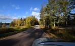 underbara höstvägar på väg mot Båtsnäs...