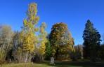 Vårviks gamla kyrkogård i ett fantastiskt ljus och färger...