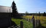 poserar vid ett klassiskt fäbod staket...