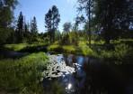 den vackra ån slingrar sig vidare i det  underbara landskapet...