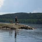 Julia och hundarna vid Asa sjön