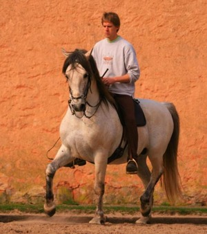 Christofer and Siglavy Capriola Zetor, his Lipizzaner stallion