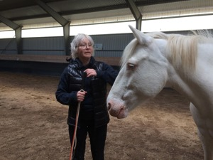 AnnCharlotte and her ponie Viva. Do i have to tell you, I LOVE CREMELLO PONIES :-) They did great during the clinic in Gotland. Playing in Liberty