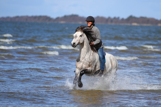 Me and Sparv playing in the water. Photo, Zandra Zahlofoto