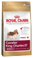 Royal Canin Breed Cavalier King Charles 27