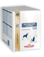 Royal Canin Veterinary Diets Rehydration Support Cats/Dogs