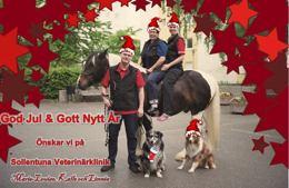 God Jul & Gott Nytt År önskar vi på Sollentuna Veterinärklinik