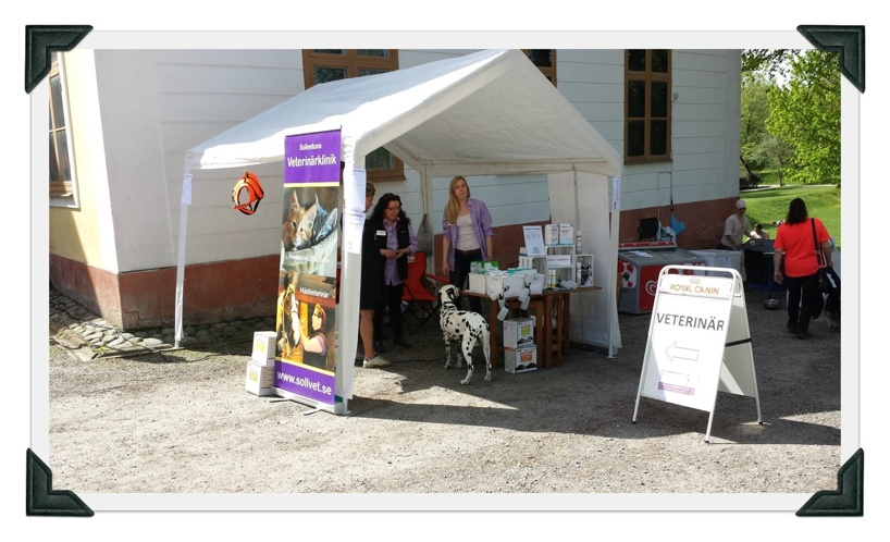 Sollentuna Veterinärklinik - Hundens Dag 2014