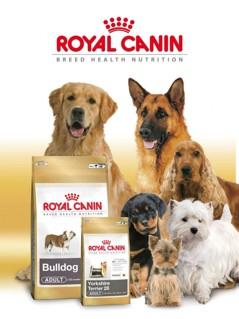 Sollentuna Veterinärklinik har ett komplett utbud av både breeder- och dietfoder till både hund och katt!