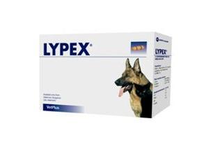 Lypex -  magsyraskyddande bukspottsenzymer - Lypex