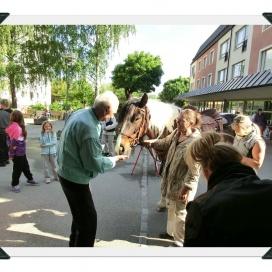 Sollentuna Veterinärklinik - Vårfest 2012 CIMG0134