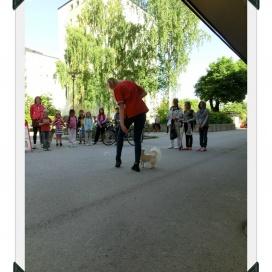 Sollentuna Veterinärklinik - Vårfest 2012 CIMG0153