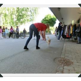 Sollentuna Veterinärklinik - Vårfest 2012 CIMG0155