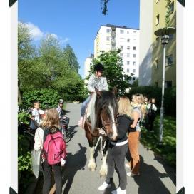 Sollentuna Veterinärklinik - Vårfest 2012 CIMG0162