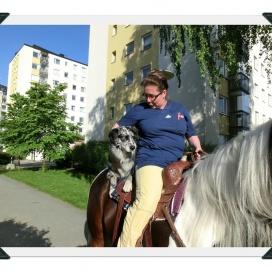 Sollentuna Veterinärklinik - Vårfest 2012 CIMG0200