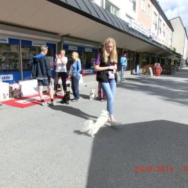 Sollentuna Veterinärklinik - firar 5 år -  14