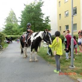 Sollentuna Veterinärklinik - firar 5 år -  18