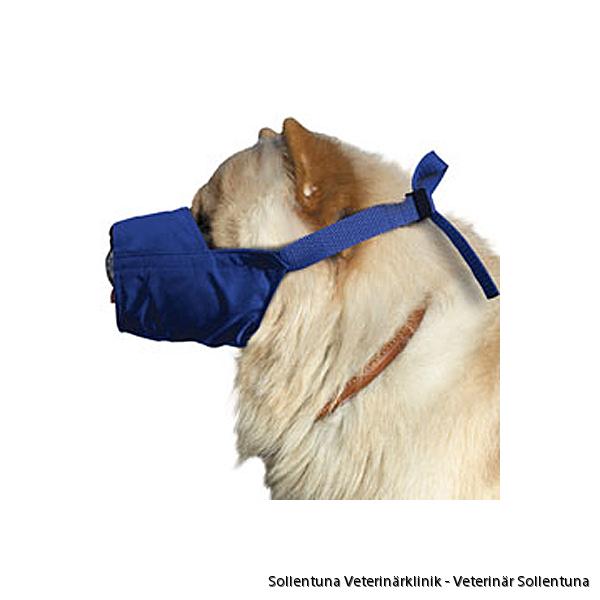 Sollentuna Veterinärklinik - munkorgar L-kort-nos
