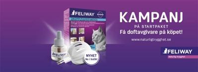 Feliway doftgivare till katt