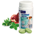 Cooldent - Tandhygieniska tuggtabletter till hund