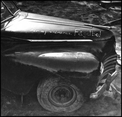 Gammal bil med fågelbo på Sahlins bilskrot.
