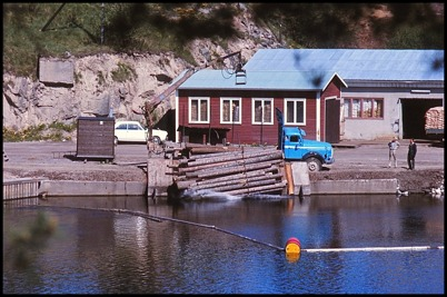 Tippning av sågtimmer vid Bruket i Töcksfors.