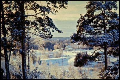Utsikt över Töcksfors från Hytta på 1960-talet.