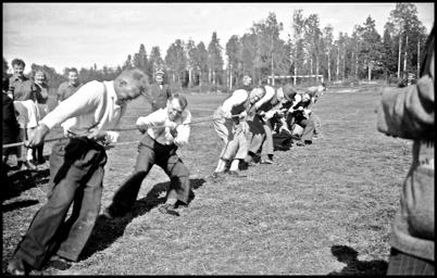 Dragkamp på Hagavallen på 1940-talet.