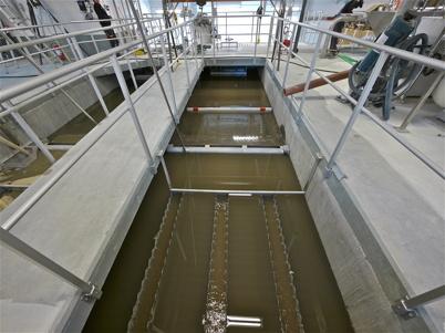 Avloppsvattnet pumpas nu in genom den nya delen av reningsverket. Den nya och äldre delen är nu sammankopplade.