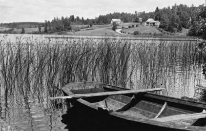 Torsviken och gamla vägen till Sanda / foto : Serie foto Töcksfors ( Karin Skafjeld Anderssons arkiv )