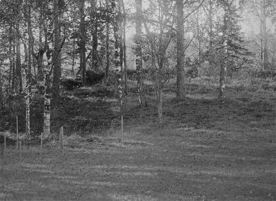 Skansen vid Elverud (Stubberud) - 1923.