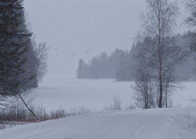 31 januari 2014 - Vissa dagar snöade det kraftigt.