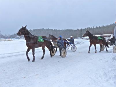 1 februari 2014 - Töcksmarks Travklubb genomförde Istrav på Årjängs Travbana.