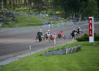 7 juni 2014 - På Årjängs travbana var det ponnyhästarnas  dag, med enbart ponnylopp.