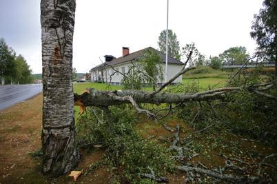 24 juli 2014 - Töcksfors drabbades av ett trombliknande oväder som bl a knäckte ett träd vid församlingshemmet.