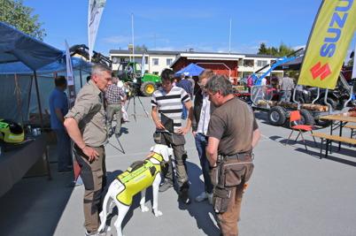 Visning av rovdjursskydd för jakthund.