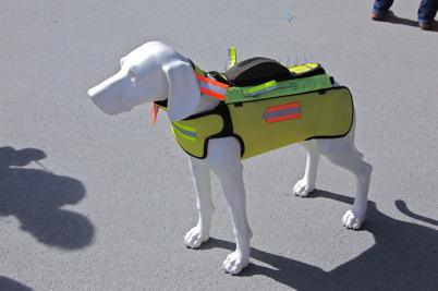 www.hundskydd.se - rovdjursskydd för jakthund.