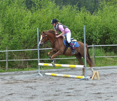 1 juni 2013 - vid Mosseruds gård i Vännacka genomfördes hästhoppningar.