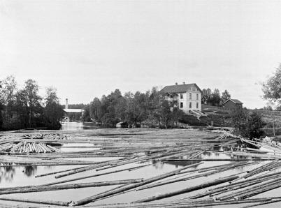 Lösflottning av timmer vid övre forsen i Töcksfors.