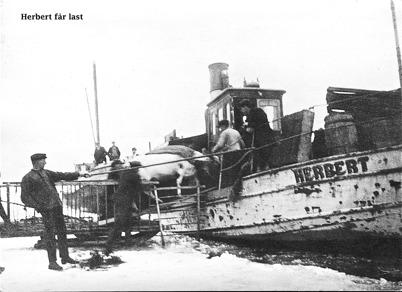 Bogserbåten HERBERT / Foto : okänd.