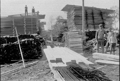 Virkesupplaget vid sågverket i Gottarsbyn.