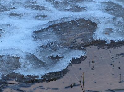 17 januari 2015 - Vid strandkanten kunde man dock se att isen inte var så bra.