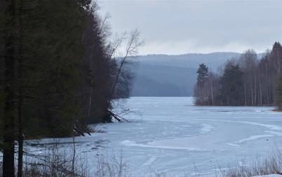 29 januari 2015 - På Torsviken började isen lösas upp.