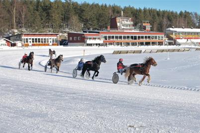 7 februari 2015 - Töcksfors travklubb arrangerade istrav på Årjängs travbana.