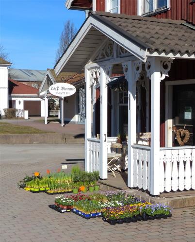 12 mars 2015 - Vid Blomsterbutiken kunde man se att våren var nära.