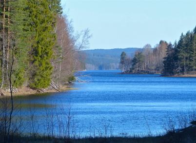 23 april 2015 - Och Torsviken var isfri.
