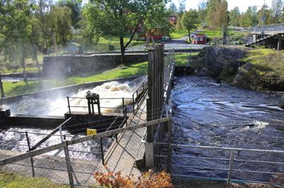 18 september 2015 - Det myckna regnandet gav ett intensivt vattenflöde i forsarna.